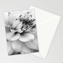 FLOWER MACRO - 11118/1 Stationery Cards