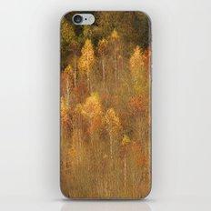 Autumn Morning iPhone & iPod Skin