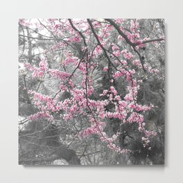Under The Redbud Tree Metal Print