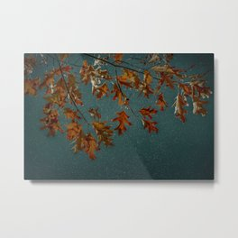 Rust Oak Leaves on Teal Night Sky Metal Print
