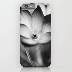 It's All Gone Tomorrow iPhone 6s Slim Case