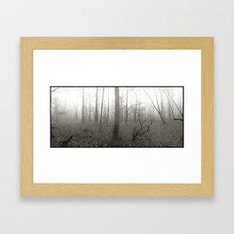 Foggy Morning, Washington Grove Framed Art Print