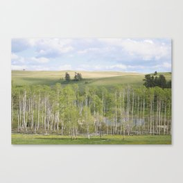 Lake and trees landscape Canvas Print