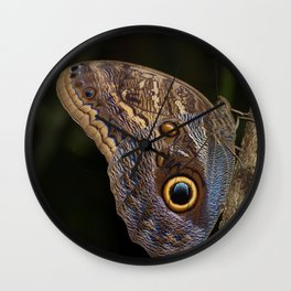 Owl butterfly in Costa Rica - Tropical moth Wall Clock
