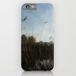 Nature and landscape 5 reed iPhone Case