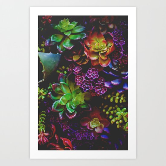Treasure of Nature VI Art Print