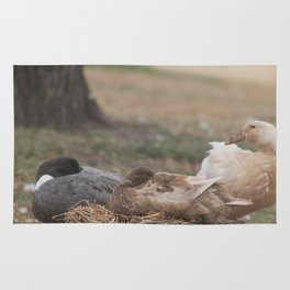 Shhh... Ducks are Sleeping Rug