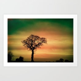 Singular Tree against the sky Art Print