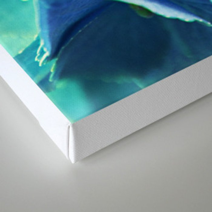 summerfeeling Canvas Print