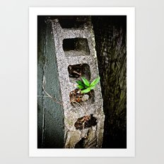 Nature finds a way. Art Print