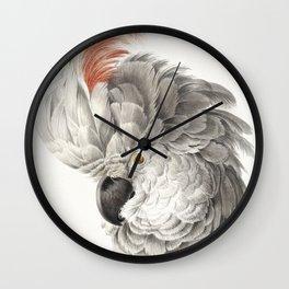 Vintage Tropical Cockatoo Illustration Wall Clock