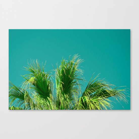 Palms on Turquoise Canvas Print