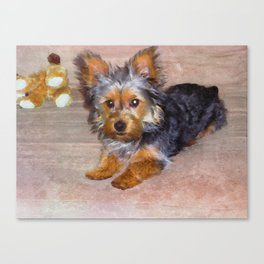 Silky Terrier Puppy - rendered as watercolor Canvas Print