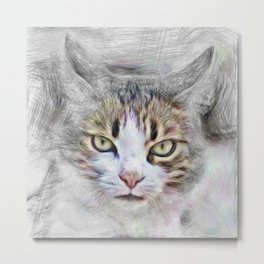 Artistic Animal Cat Metal Print