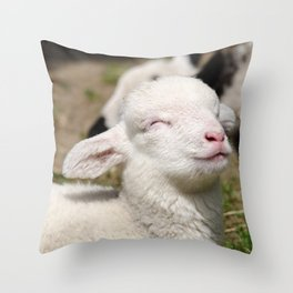 Spring lamb Throw Pillow