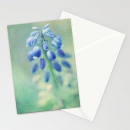 muscari Stationery Cards