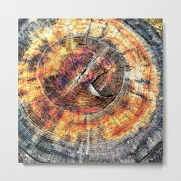 Tree Stump Ring Circle Metal Print