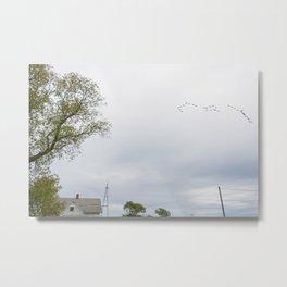 Birds on Bechtel Metal Print