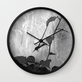 Ivy on Concrete Wall Clock