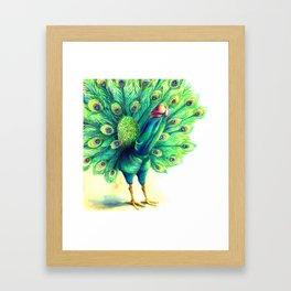 Peacock  falo real Framed Art Print