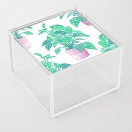 Tropical Houseplant Acrylic Box