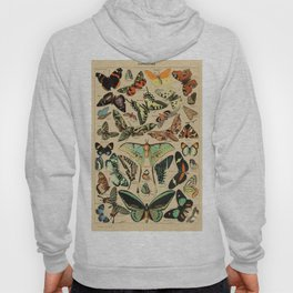 Adolphe Millot- Vintage Butterfly Print Hoody