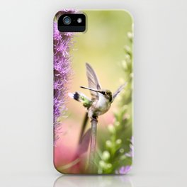 Hummingbird Whimsy iPhone Case