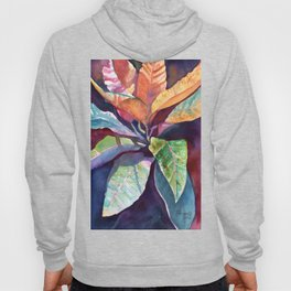 Colorful Tropical Leaves 3 Hoody