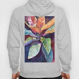 Colorful Tropical Leaves 3 Hoody