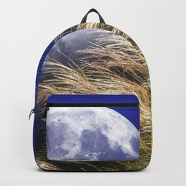 Awesome Beautiful Earth Satellite Glowing In Sky Mountain Reed Field High Definition Backpack