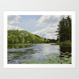 Secret Adirondack Pond Art Print