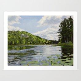Secret Adirondack Pond Art Print