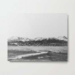 THE MOUNTAINS XIV Metal Print