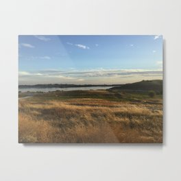 Brush Metal Print