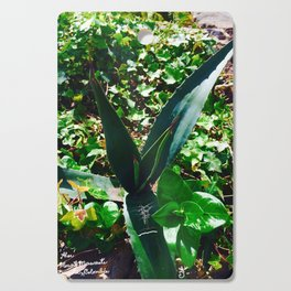Aloe Vera at the top of Mount Monserrate in Bogota, Colombia Cutting Board