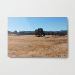Fall Field Photography Print Metal Print