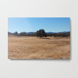 Fall Field Photography Print Metal Print
