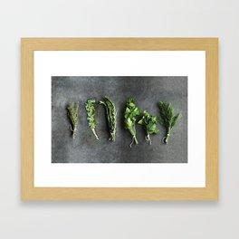 Herbs Framed Art Print
