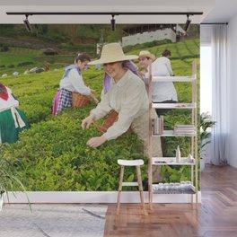 Porto Formoso tea gardens Wall Mural