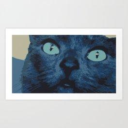 Cat Photography: Willow II Art Print