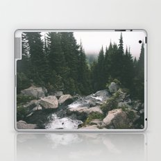Washington Laptop & iPad Skin