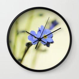 Myosotis alpestris Wall Clock
