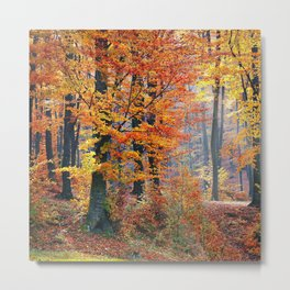 Colorful Autumn Fall Forest Metal Print