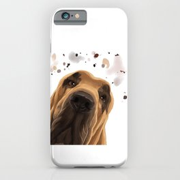 Curious Bloodhound Dog iPhone Case