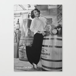 Have A Drink Canvas Print