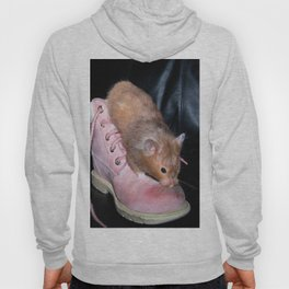 The Old Hamster in the Shoe Hoody