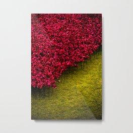 Sea of Poppies Metal Print