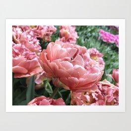 Copper Image Tulip Art Print