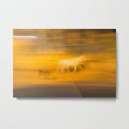 Dog & horse   Fine art print  Metal Print