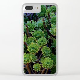 Succulent valley Clear iPhone Case